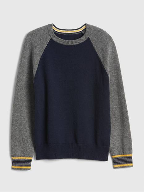 Kids Raglan Sweater