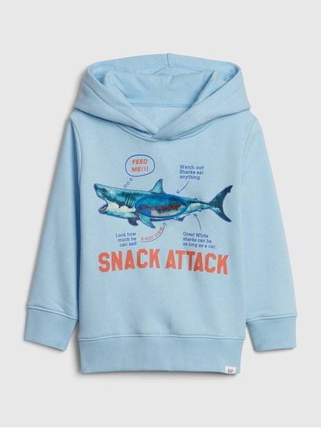 Toddler Graphic Hoodie Sweatshirt